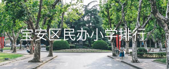 2018年深圳市宝安区民办小学排行榜