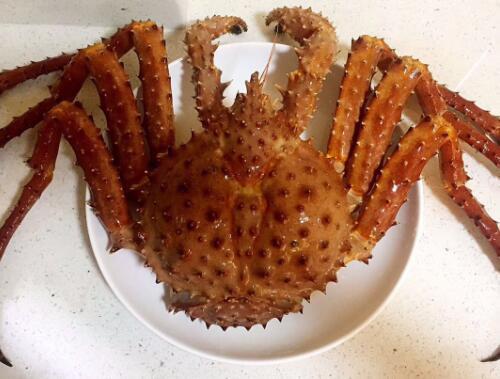 大头海鲜 鲜活冻阿拉斯加帝王蟹