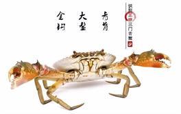 2017年最值得购买的三门青蟹排行榜(上篇)