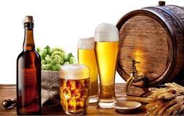 2017年进口啤酒品牌热销排行榜(下)