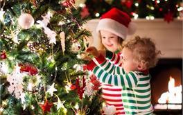 2017年最值得购买的圣诞树排行榜