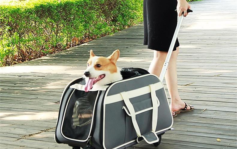 2018年宠物外出便携包排行榜——宠物拉杆包排名