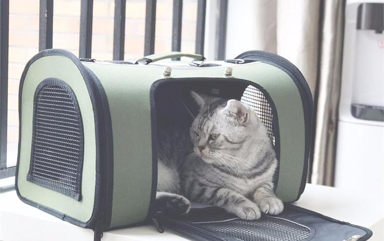2018年宠物外出便携包排行榜——宠物提包排名(上篇)