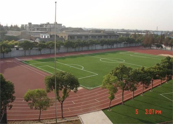 杨柳初级中学