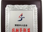 深圳中小企业投融资联盟荣誉证书