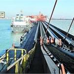 限制进口煤政策短期影响有限 长期还得看国内市场