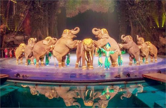 长隆国际大马戏,长隆香江野生动物世界,长隆水上乐园,广州鳄鱼公园5个