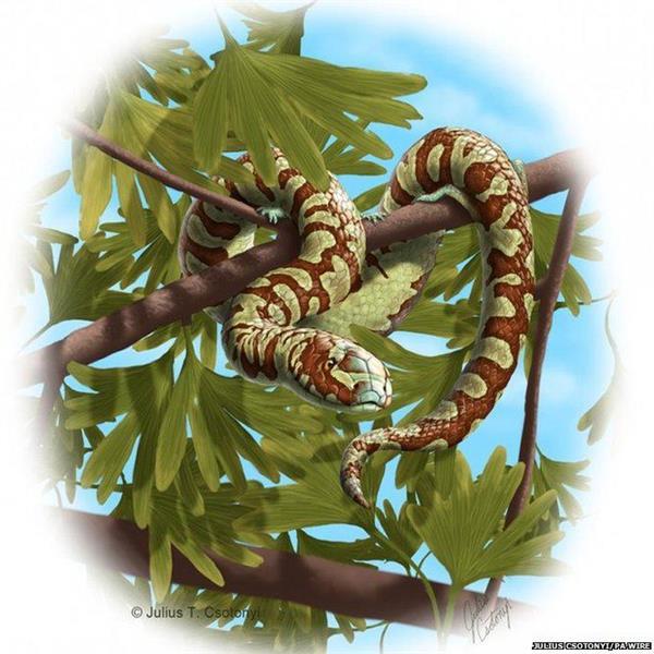 7亿年前的蛇类竟长四条腿