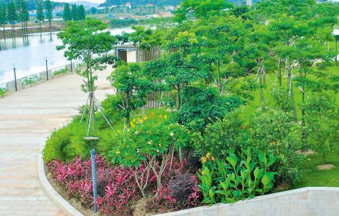 城市园林绿化建设现状分析 市场发展前景与效率