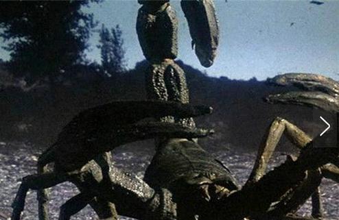揭秘十种神秘超级远古动物:恐怖陆地杀手蝎海蝎