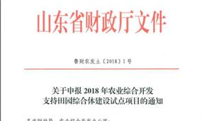 山东省田园综合体政策