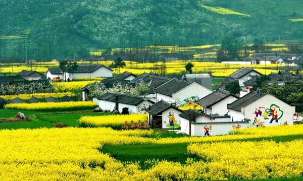 乡村旅游如何开发才是正确途径?_文旅产业规划 - 前瞻图片