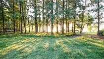 2019年全国森林康养基地试点开始申报