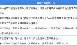 2018年中国调味品行业市场概况与发展趋势 头部厂商依靠产地优势树立起产品壁垒【组图】