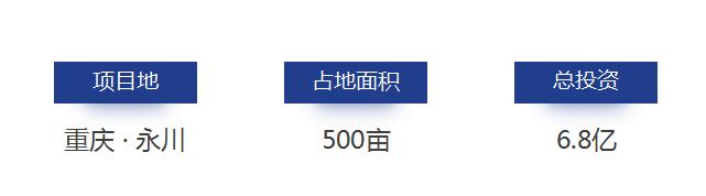 重庆市永川茶山养生谷