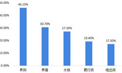 2018中国宠物用品及服务行业发展现状与发展前景