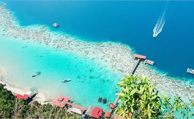 预计今年的国际游客人数将下降58%