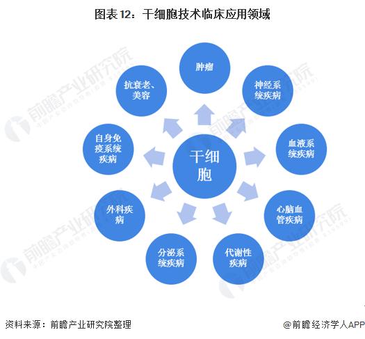 图表12:干细胞技术临床应用领域