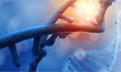 《自然》子刊:新设计首次生成单个细胞染色体三维图