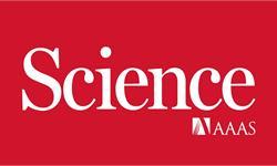 《科学》杂志——1月21日当周收录指南