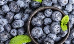 2020年中国蓝莓行业市场现状、竞争格局及发展趋势分析 未来将呈现六大态势发展