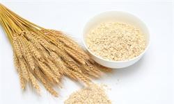 2020年中国燕麦片行业发展现状分析 市场规模及需求量均呈现逐年增长态势