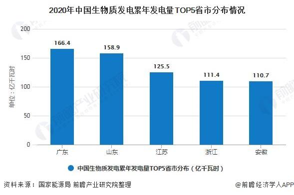 2020年中国生物质发电累年发电量TOP5省市分布情况