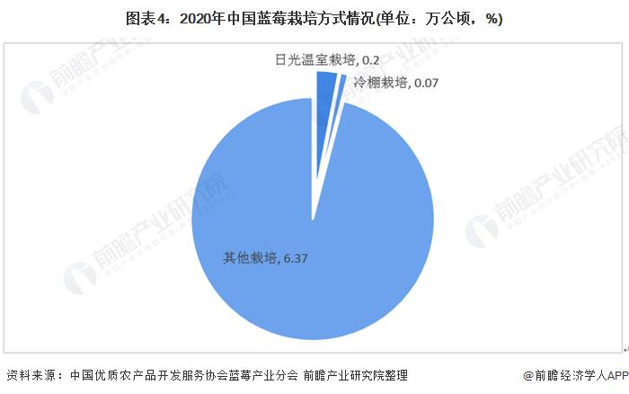 图表4:2020年中国蓝莓栽培方式情况(单位:万公顷,%)