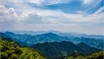 长垣市:2021年森林长垣生态建设工程实施方案
