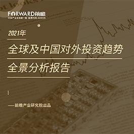 2021年全球及中国对外投资趋势全景分析报告