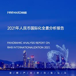2021年人民币国际化全景分析报告