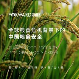 全球粮食危机背景下的中国粮食安全