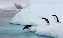里程碑!中国客机首降南极飞行20小时 海航将首个中国旅游团送达南极