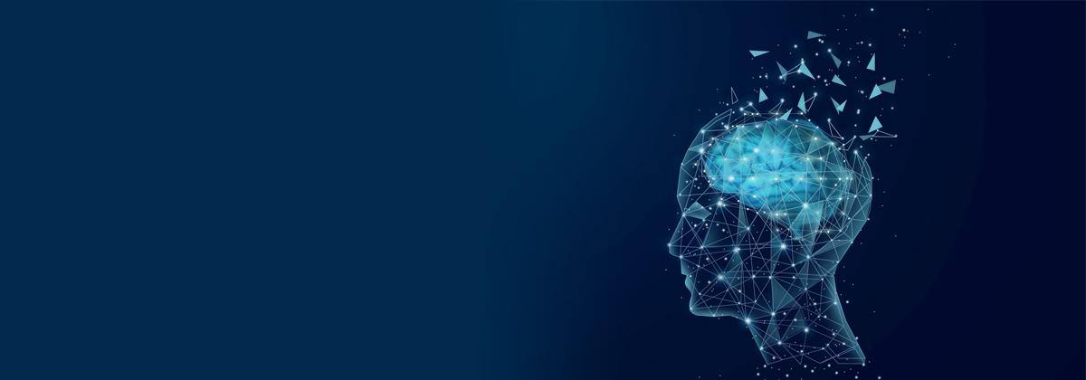 科学家刚刚在人类头部中心发现一个神秘器官,竟被忽视了几个世纪