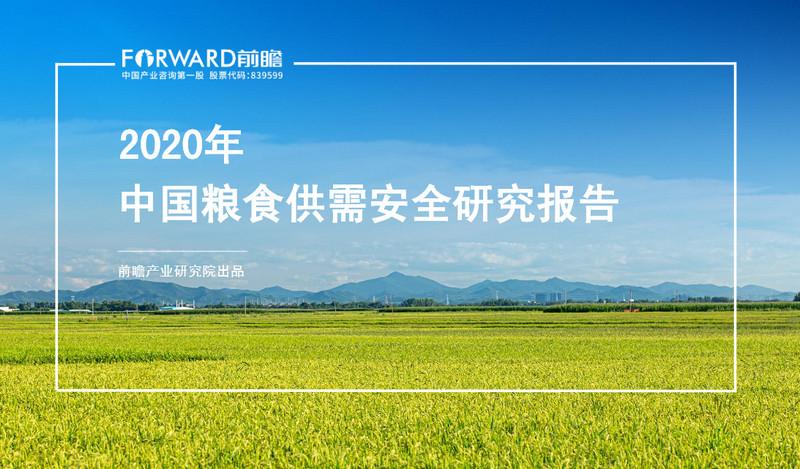 前瞻产业研究院:2020年中国粮食供需安全研究报告