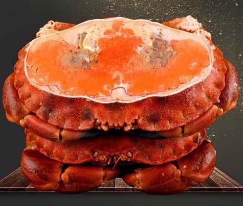 百鲜荟旗舰店 英国面包蟹1800-2000g(两只)