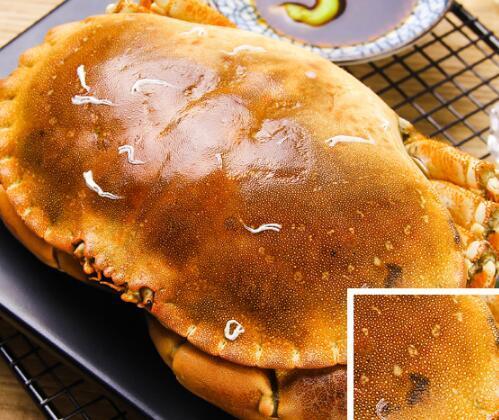 深水游旗舰店 英国进口高品质面包蟹600g(一只)