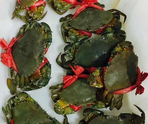 蟹必剥三门小海鲜青蟹 三门青蟹大红膏蟹母蟹