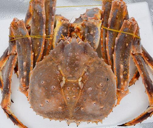 海鲜大王 活冻阿拉斯加帝王蟹