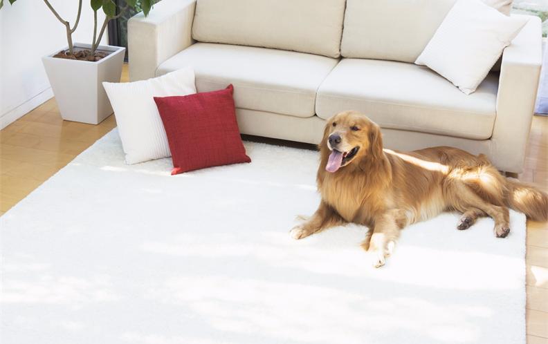 2017年淘宝天猫平台移动地暖垫十大品牌排行榜——地暖毯品牌排名