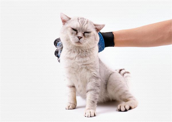 碧净 去毛按摩撸猫手套