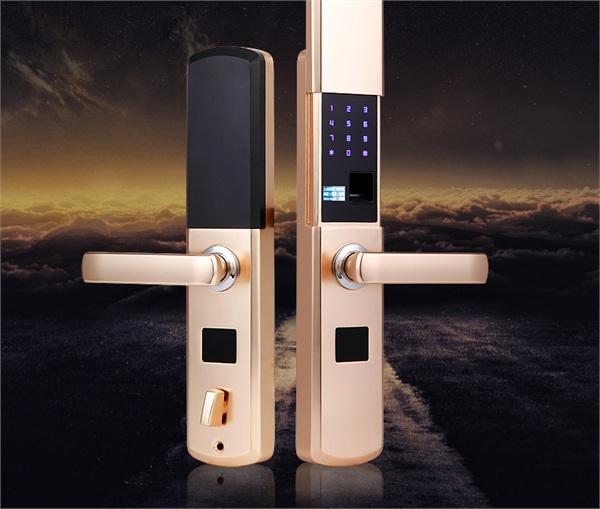 温美家 智能电子门锁