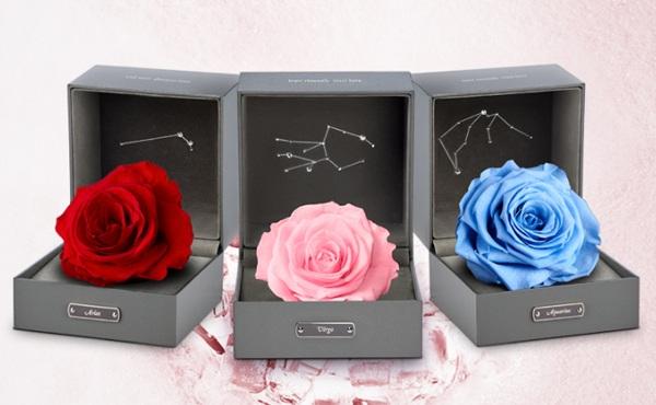 roseonly 永生花星座礼盒