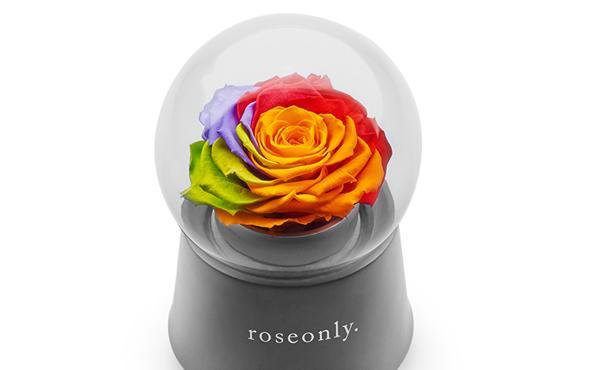 roseonly 七彩玫瑰永生花音乐盒
