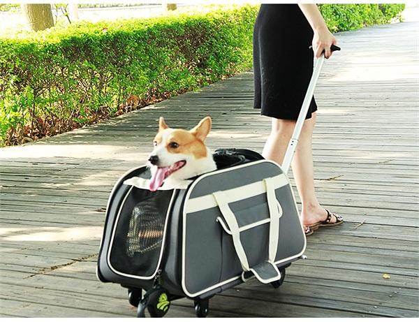 petsfit旗舰店 宠物外出拉杆便携包