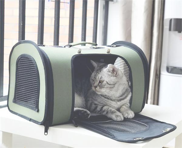 蛋卷商店 宠物外出旅行手提包