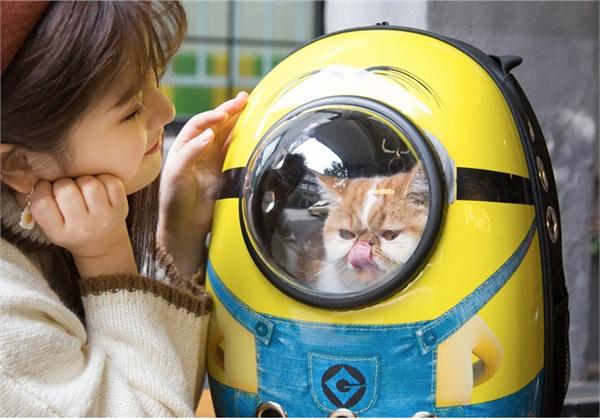 艾塔宠物用品专营店 太空舱宠物包