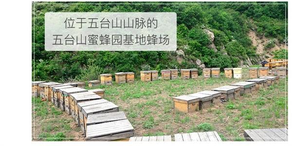 五台山旗舰店 纯农家自产野生土蜂蜜百花蜂蜜