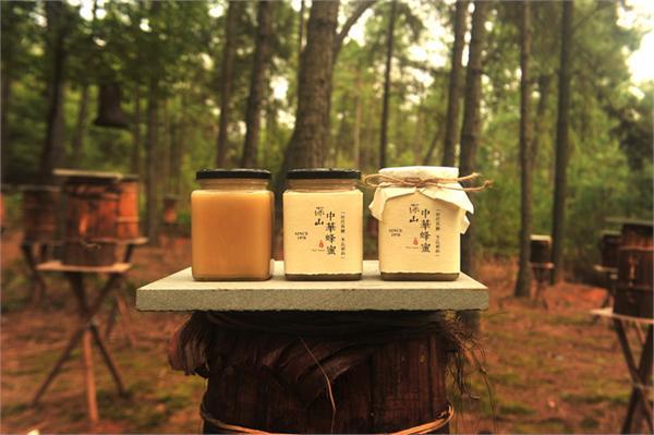 深山木桶蜂传承人嫩哥 深山古法割蜜