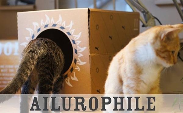 Poopy Cat litter box折叠便携猫砂盒